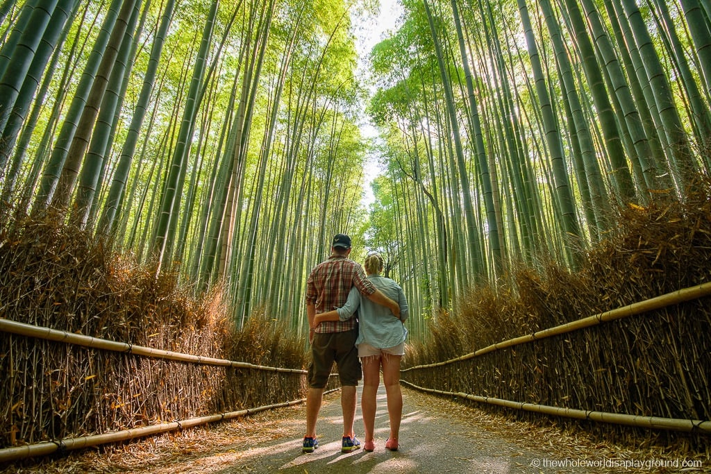 Best things to do in Kyoto 15 Must See Sights  the whole