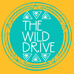 the wild drive blog