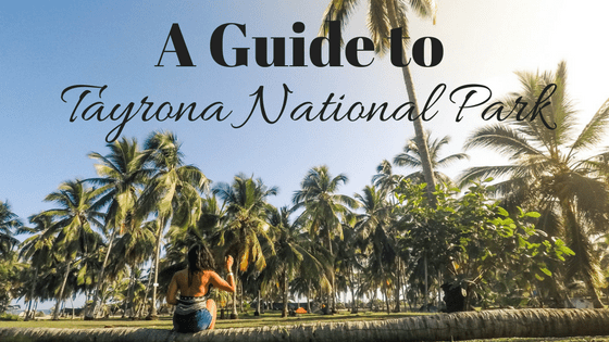 How to get to Tayrona National Park