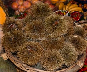 Piles of chestnuts in their outer shells
