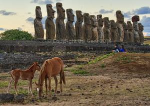 Horses and Ahu Tongariki, Rapa Nui, Easter Island