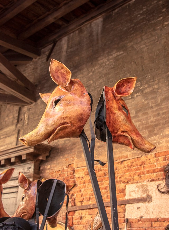 Masks of Pigs, Venice, ©BillGent