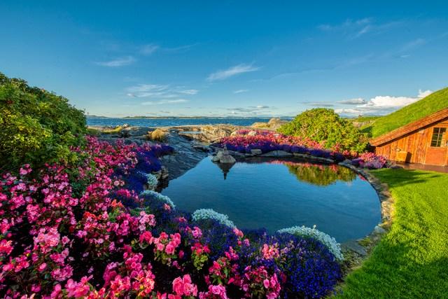 A flower festooned pond at Flor og Fjære, Stavanger