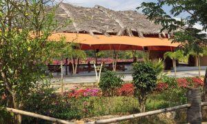 yoga teacher training in ashram
