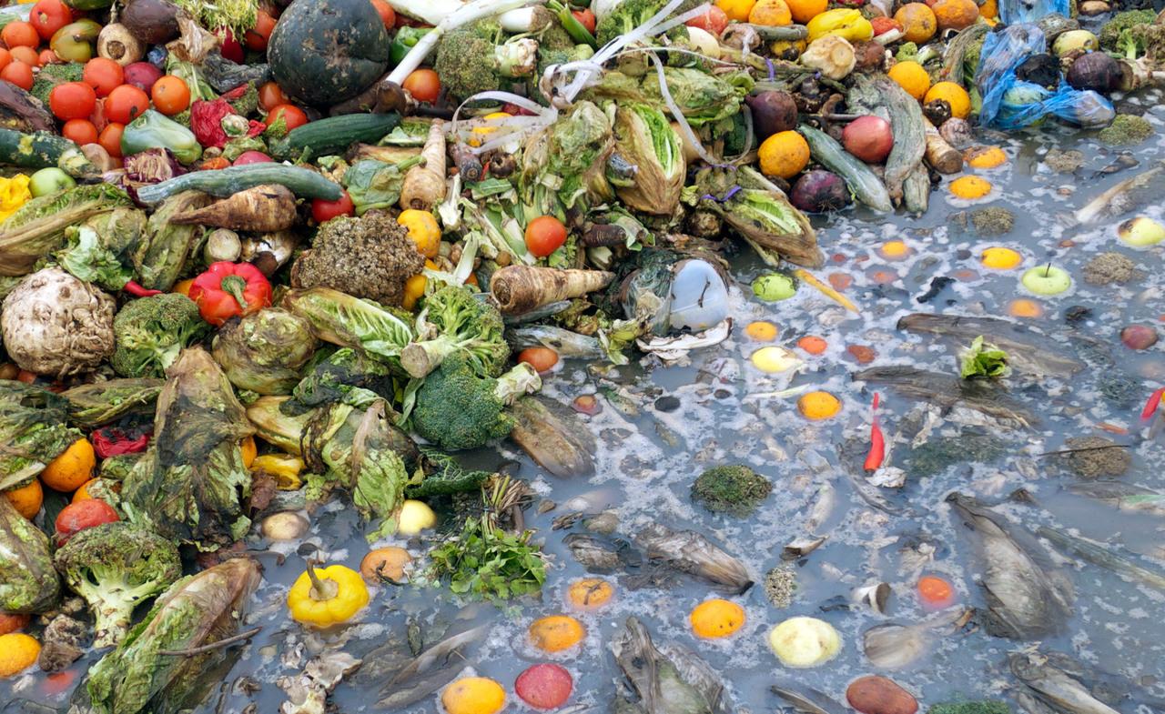 Fenomenologia dello spreco alimentare