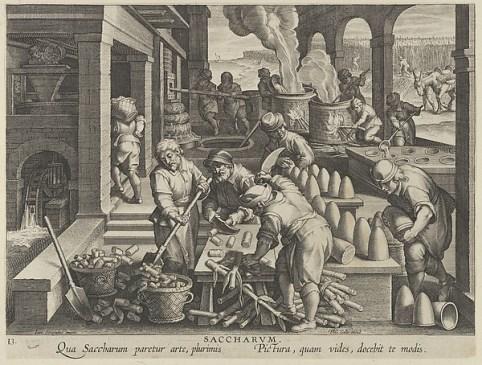 Processo di lavorazione dello zucchero illustrato da una stampa del XVI secolo.