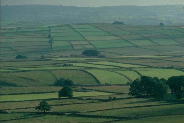 Esempio di enclosures e del cambio nel paesaggio rurale