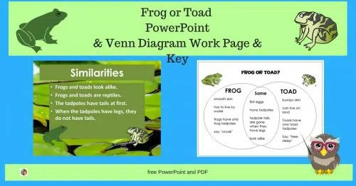 frog and toad venn diagram 2002 nissan pathfinder exhaust