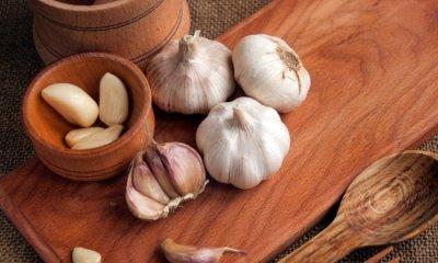 garlic, benefits of garlic, health benefit of garlic