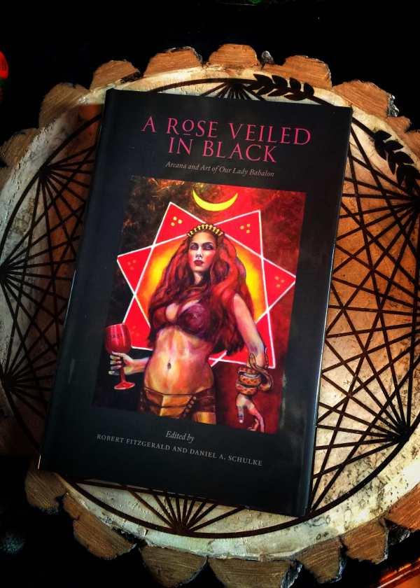 A Rose Veiled in Black
