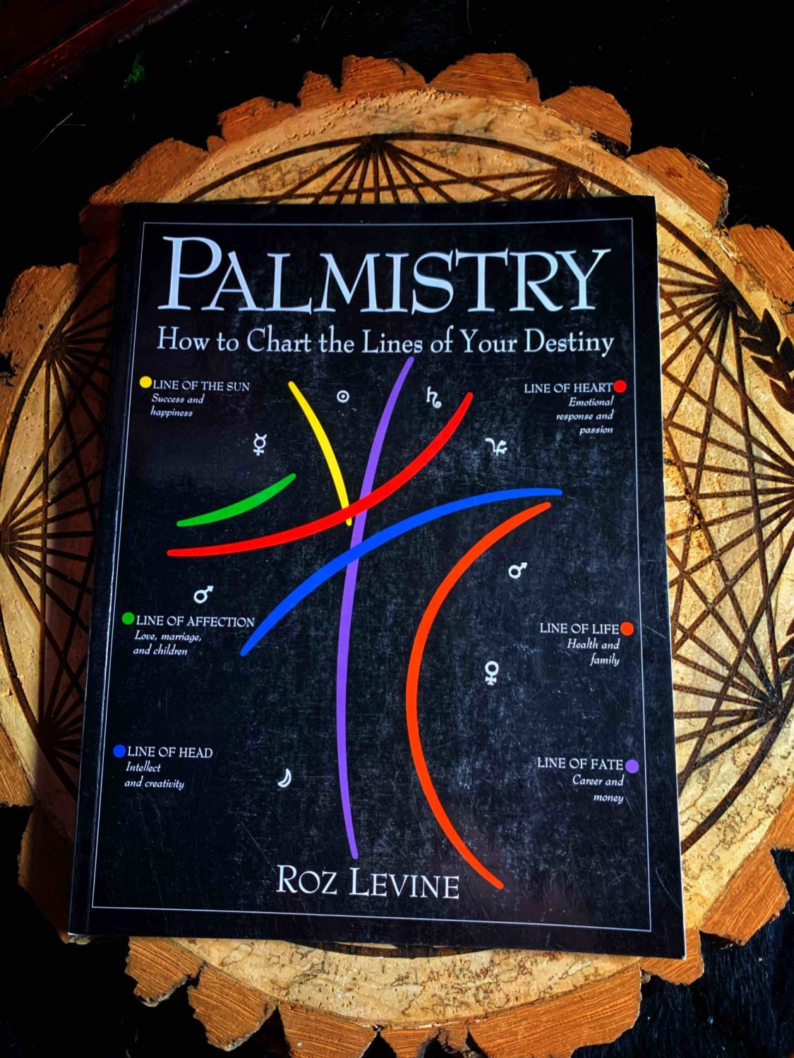 Palmistry Chart The Lines