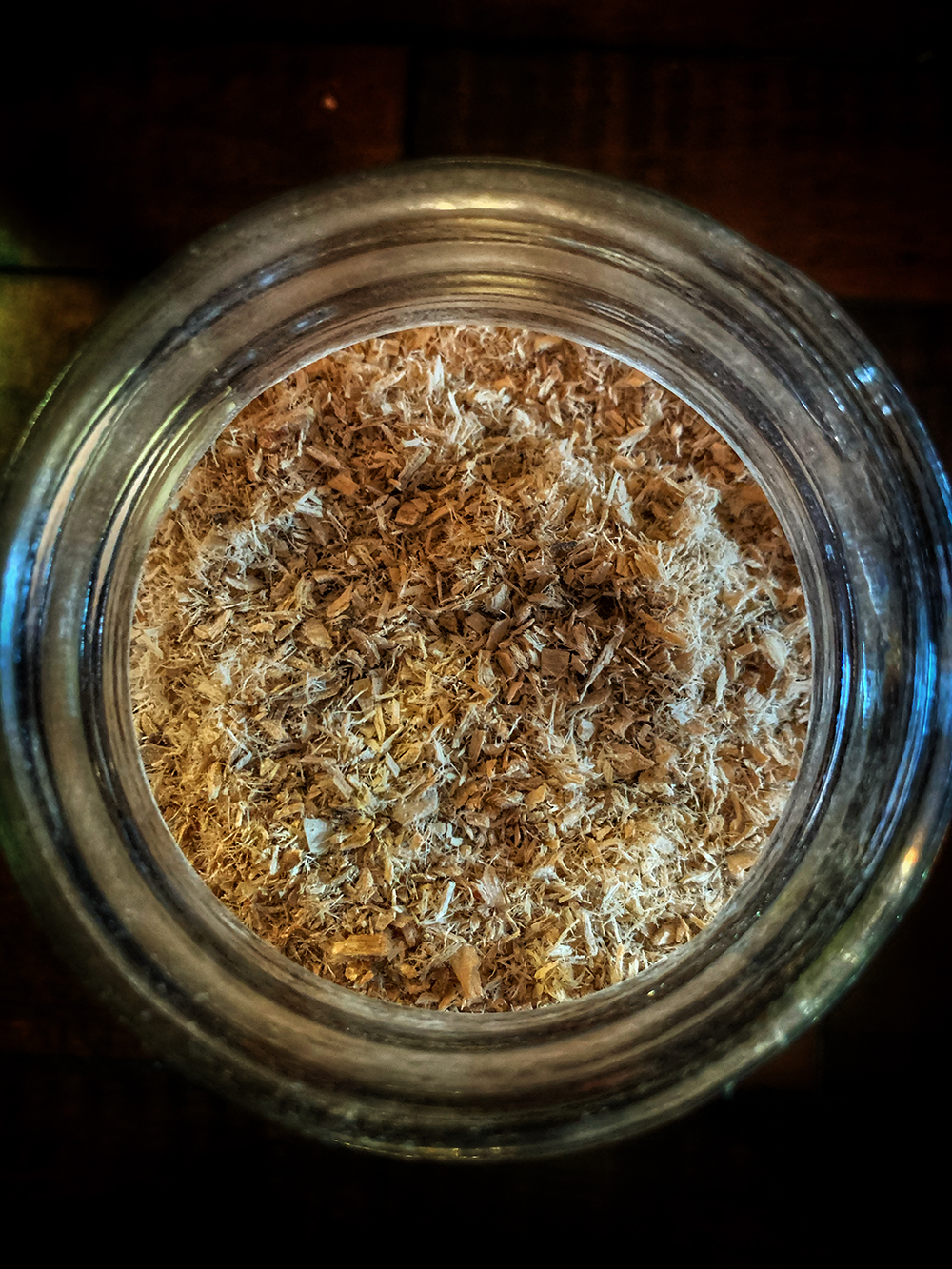 Slippery Elm Witchcraft