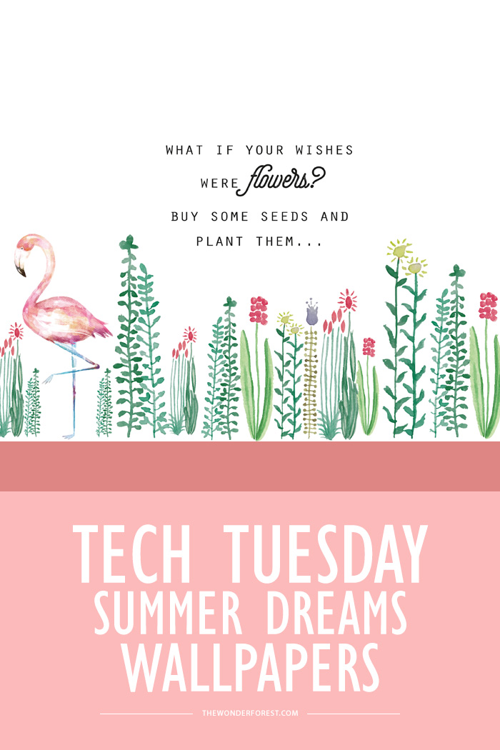 Dreamer Quotes Wallpaper Tech Tuesday Summer Dreams Wallpapers Wonder Forest