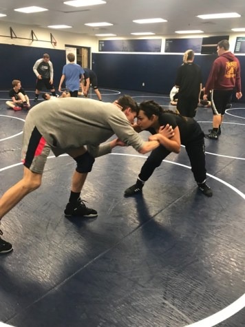 Four Girls Follow Cavallaro's Footsteps, Join Wrestling Team for 2017-2018 Season