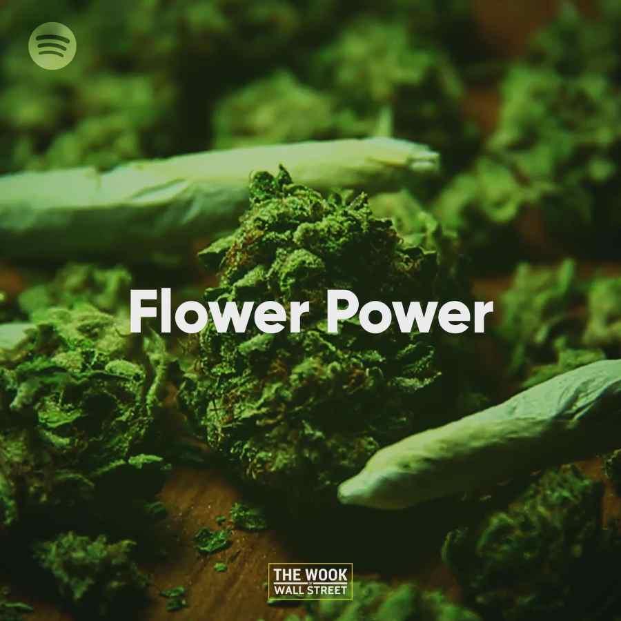 ac-Power-The-Wook-of-Wall-Street-Spotify-Playlist