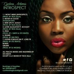 Introspect Tracklist