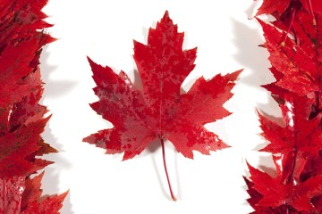 CANADA-FLAG-leaf-thewordisbond