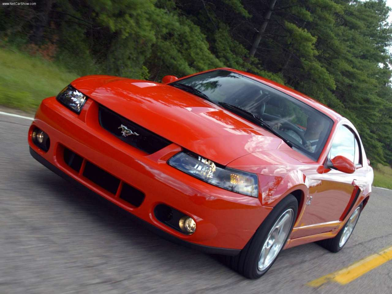 2003-04 Mustang SVT Cobra with the Terminator engine | The ...