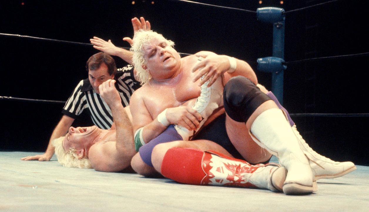 Dusty-Rhodes-Fight