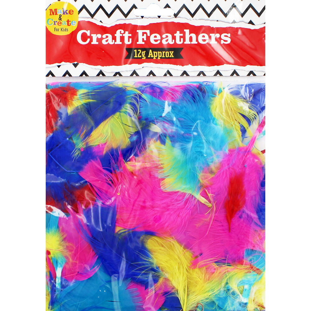 Assorted Coloured Feathers The Works