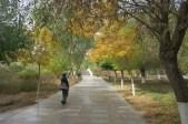 Herbstliches Hami