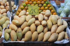 Mangos!!!