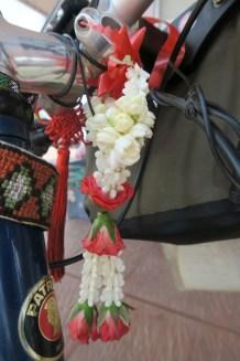 Blumenschmuck für Daniels Rad