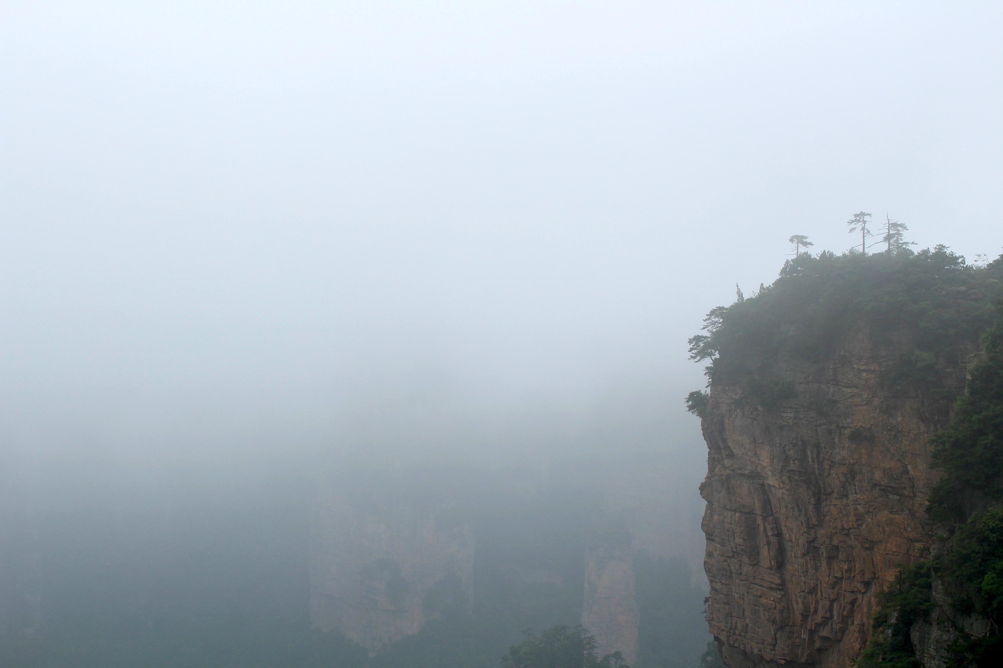 Zhangjiajie Forest 4