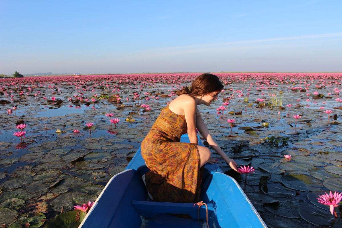 Dreamy Pink Lake in Thailand