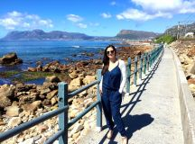 72hrs in Cape Town, South Africa: Drunken Penguins - The ...