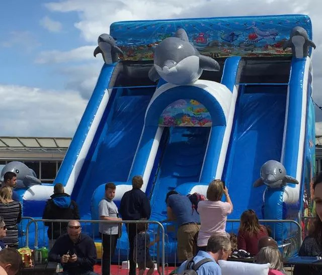 Giant Dolphin Slide at The Lido