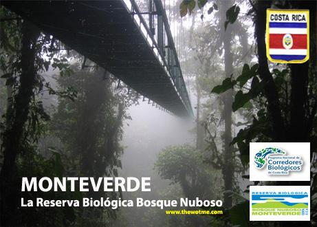Monteverde, La reserva biológica del bosque nuboso - monteverde costa rica - Monteverde, La reserva biológica del bosque nuboso
