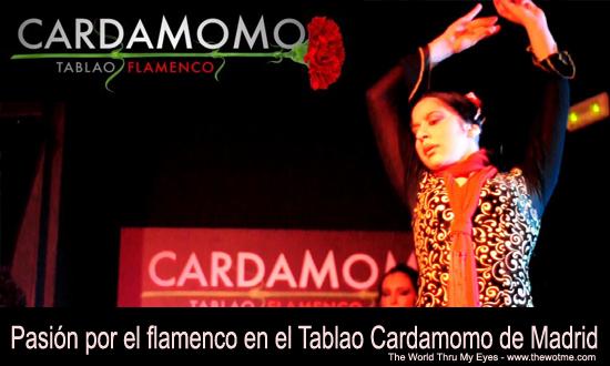 Pasión por el flamenco en el tablao Cardamomo thewotme@TV - cardamomo - thewotme@TV