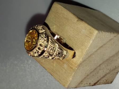 Alpha Academy High Class Ring