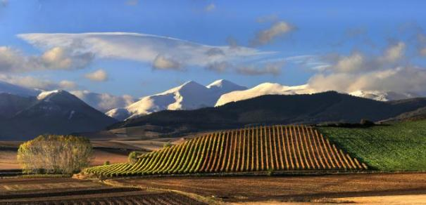 Travel, Food and Wine Writing classes in Rioja.