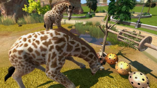 zoo tycoon giraffe