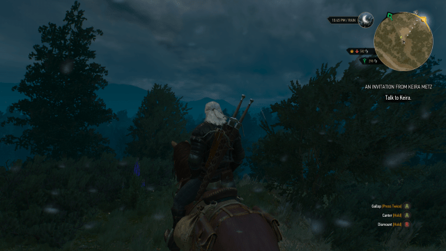 Witcher 3 pic1