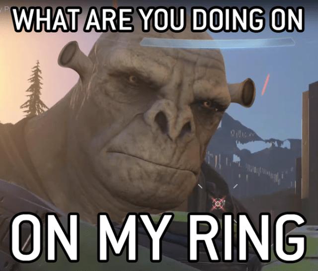 halo infinite brute meme