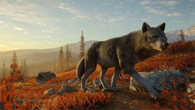 theHunter: Call of the Wild - 2021 Edition Review