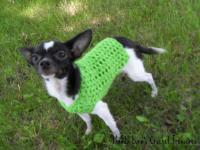 XXS any occasion dog sweater - The Yarn Box The Yarn Box