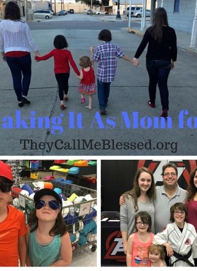 Meet Our Catholic Homeschool Family
