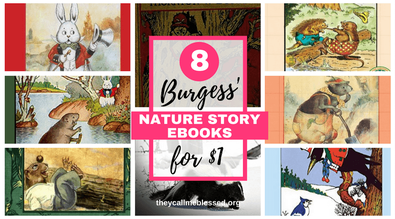 8 Thornton W Burgess Nature Story EBooks For 1