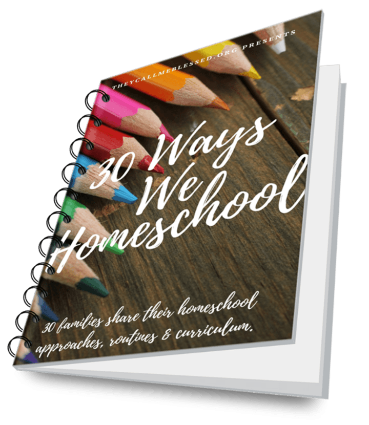 30 Ways We Homeschool eBook