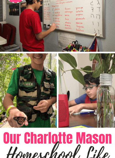 Our Charlotte Mason Homeschool Life in Puerto Rico
