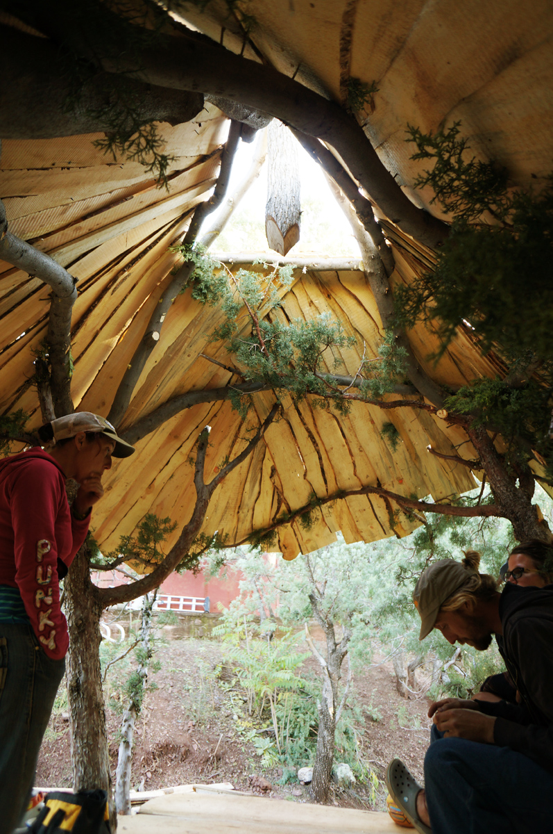 Sunray Kelley S Magical Treehouse The Year Of Mud