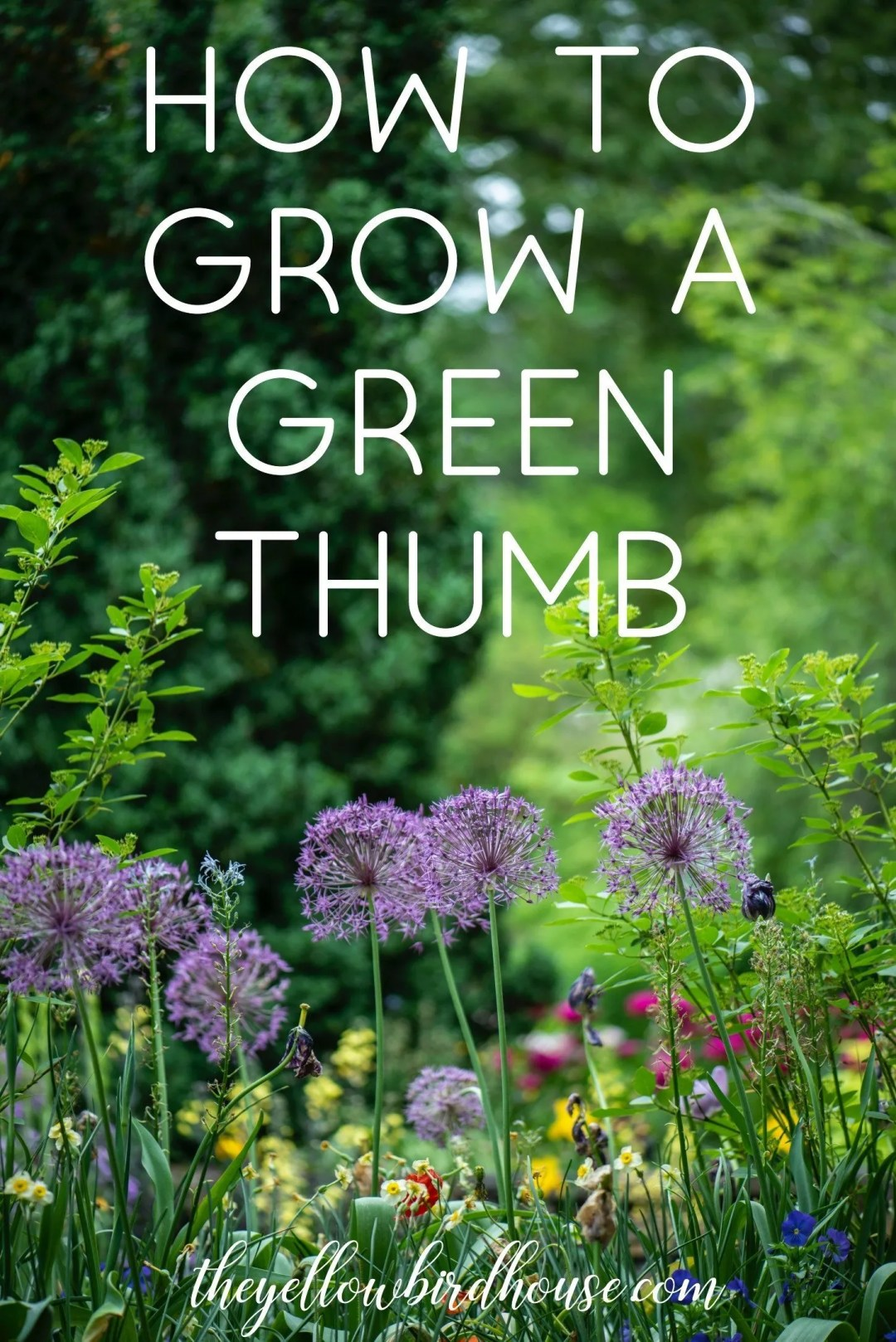 How to Grow a Green Thumb. Try some of these steps to cultivate your gardening skills!
