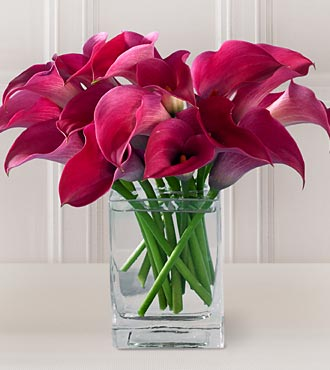 Most Loved Valentines Day Flowers The Yes Girls