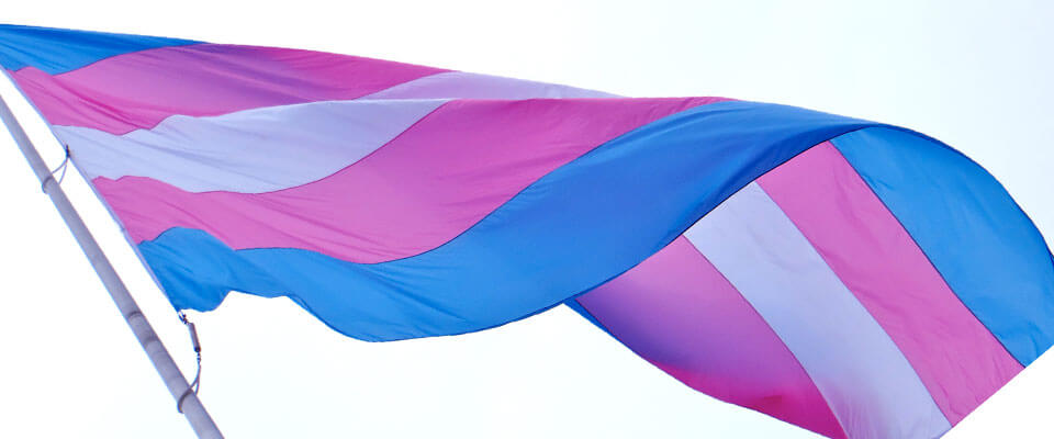 trans awareness month
