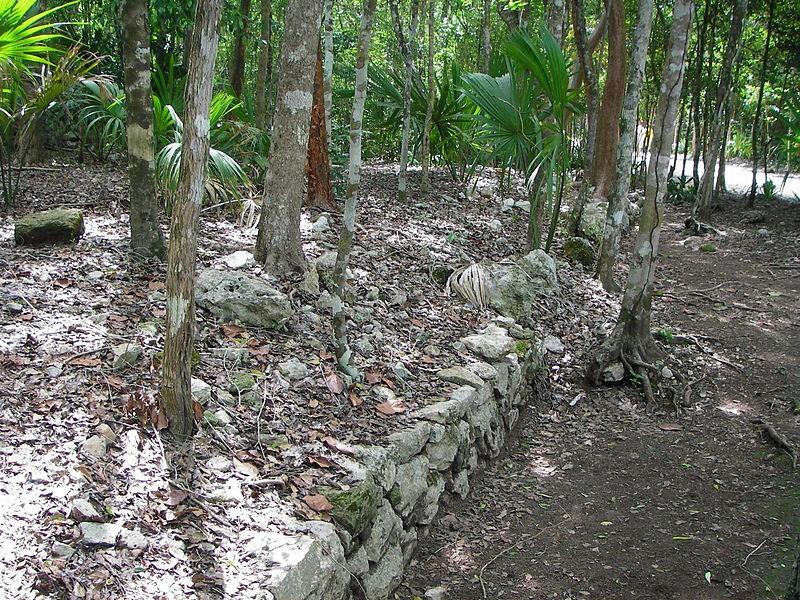 Coba Yaxuna sacbe near its eastern terminus at Coba