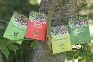 Chicza chewing gum is produced in Campeche and Quintana Roo. (PHOTO: chicza.com.uk)